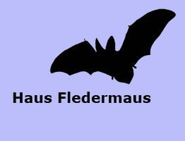 ferienhaus fledermaus reinharz. Black Bedroom Furniture Sets. Home Design Ideas
